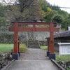 夫婦木神社のご神木は男性的パワー★ 昇仙峡の画像