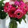 お花☆彡の画像
