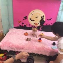 幼稚園イベント♪写真…