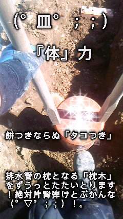 image0012.jpg