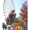 秋の公園お散歩日より◆KiyoのDiaryの画像