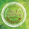 11月17日(木)トレザイールですよ!!の画像
