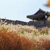 【韓国旅行/水原】水原の名所-秋旅行にぴったりのオススメ水原の名所★の画像
