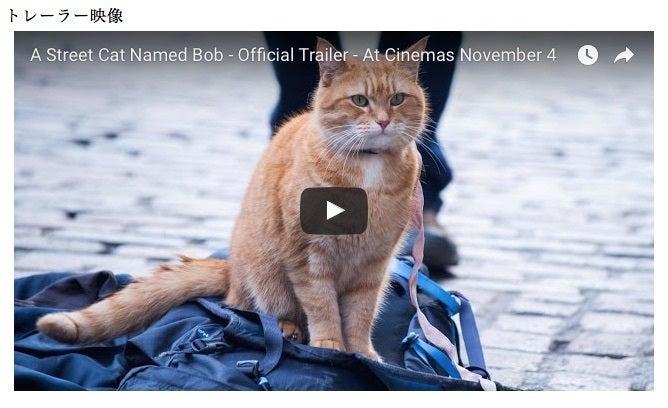 映画「ボブという名の猫 幸せのハイタッチ」オ …