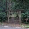 山の神様の壮大なパワースポット★大山神社 岩倉の乳房杉 隠岐の島 の画像