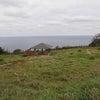 西郷岬は山や海の気が集まるパワースポット♪隠岐の島の画像