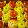 毎年楽しみな青森のりんごの画像
