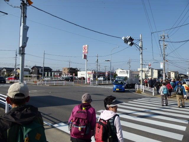 愛知県道293号桜井岡崎線