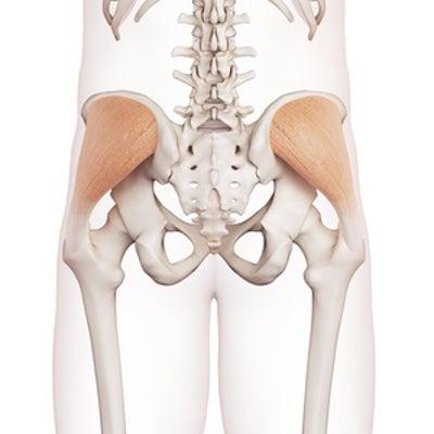 プリエで膝が横に開かない人は、中臀筋(ちゅうでんきん)が固いことが原因かも?!の記事に添付されている画像