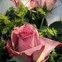 お花が教えてくれる!…