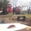 遊民谷の秋☆の画像