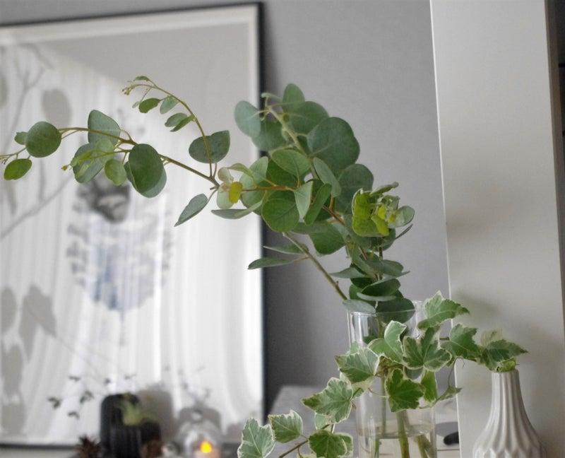 花瓶 ニトリ ニトリの花瓶・フラワーベースのおすすめ人気ランキング10選!おしゃれに飾る花瓶台も紹介|monocow [モノカウ]