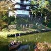 「弘前城菊と紅葉まつり」の様子がおかしすぎるの画像