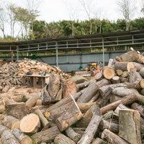 栃木県益子町 薪の販売をしています!の記事に添付されている画像