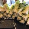 毎年恒例の白菜漬けの画像