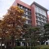 日本大学での授業の画像