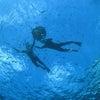 【青の洞窟】は最高だね♪ 一番近いテイクダイブに来てね!!の画像