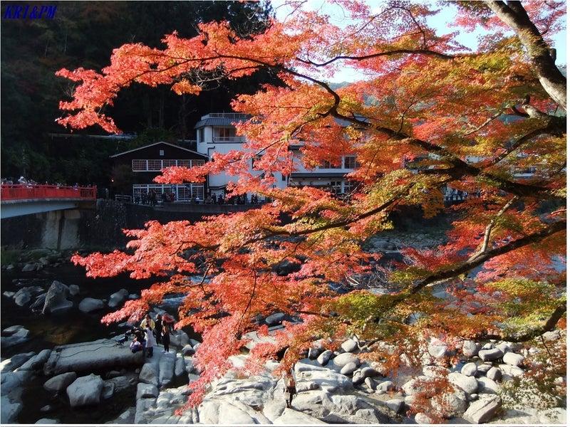紅葉(香嵐渓)3