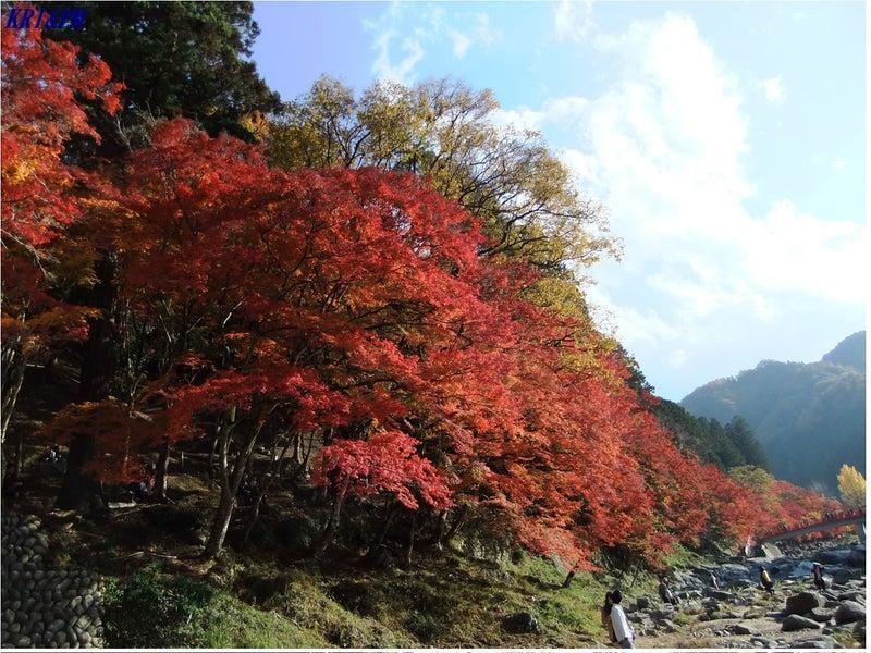 紅葉(香嵐渓)2