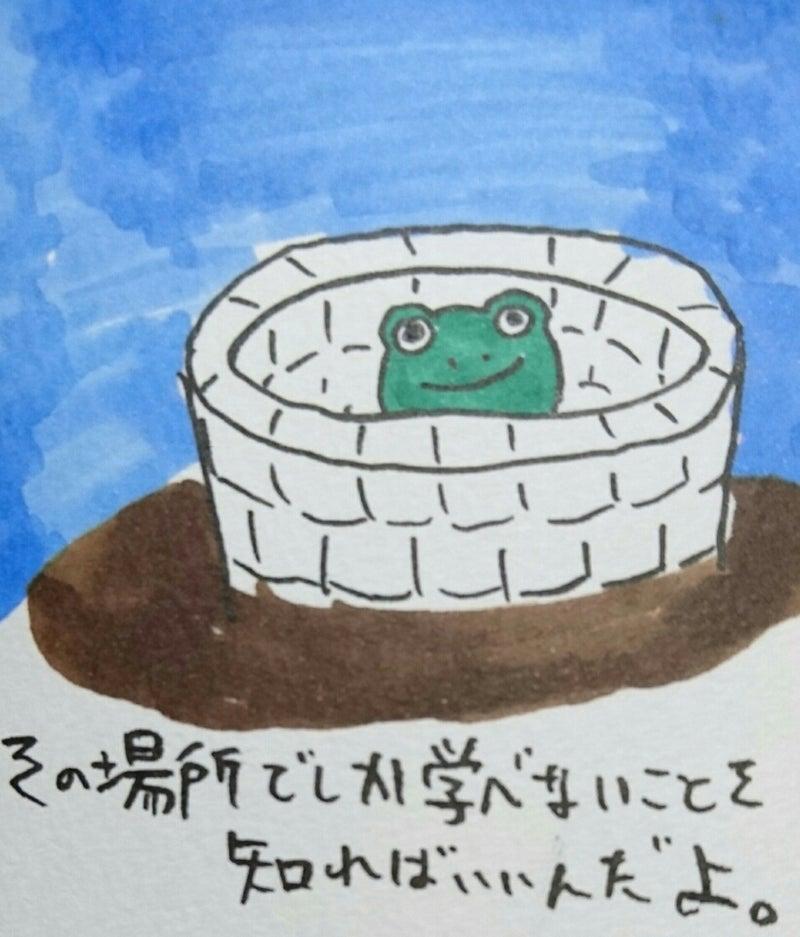 井の中の蛙、大海を知らず」には...