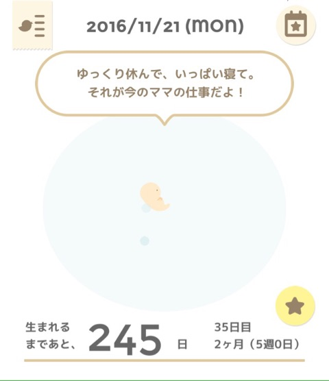 ヶ月 妊娠 流産 5