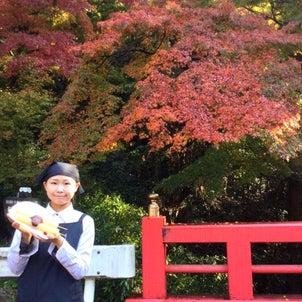 見ごろ食べごろ日本の心の画像