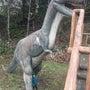 彡新潟 三大恐竜公園