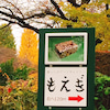 温かく愉しい木工の手しごと展『太田憲 十三年目の寄木』の画像