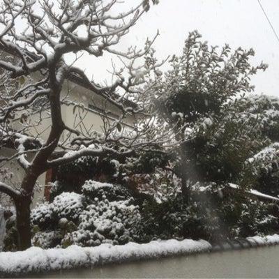 ★54年ぶりの初雪★の記事に添付されている画像