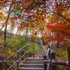 【韓国旅行/水原】水原の名所-水原代表の山【七宝山】の画像