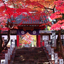 福聚山 長林寺の紅葉