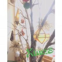 お店の可愛いクリスマ…