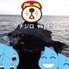 クチジロ自己新記録♪( ´▽`)の画像
