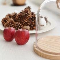 * ガラスドームで クリスマスディスプレイ & スーパーセール *の記事に添付されている画像