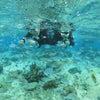 風が強いよ~!!【青の洞窟ツアー】は全便欠航・・・サンゴビーチでシュノーケル開催♪の画像