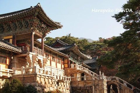 秋の慶州1泊2日②:ユネスコ世界...