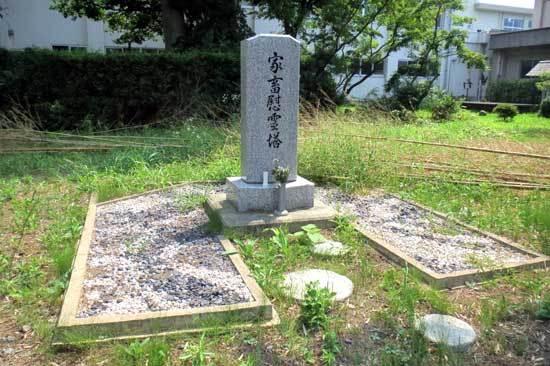 【写6】琵琶島城
