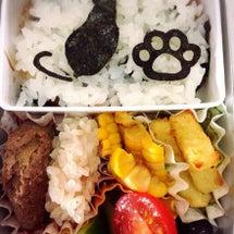 Cat-Seawee…