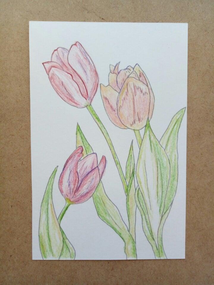 色鉛筆で塗り絵 見本を真似てみる 適応障害から脱却心を元気に
