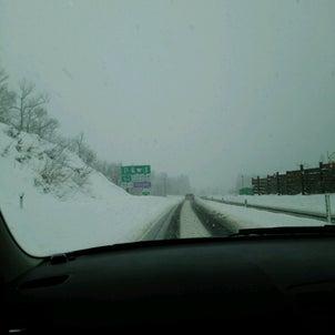 雪が無い・・の画像