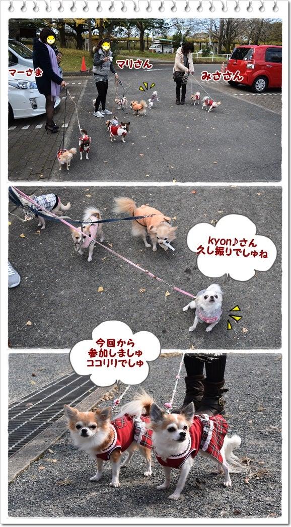 福岡へ~舞鶴公園でお散歩(*^。^*) | ♡お転婆姫とハニカミ王子 ...