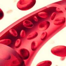 沈黙の臓器•血管につ…