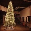 ★クリスマスツリーi…