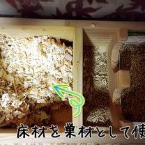 床材と巣材の記事に添付されている画像