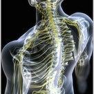 ぎっくり腰のメカニズムを解りやすくご説明しますの記事より