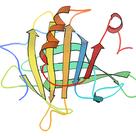 """タンパク質の専門家が解説する """"プロテイン"""" ① 〜プロテインってなんぞや?〜の記事より"""