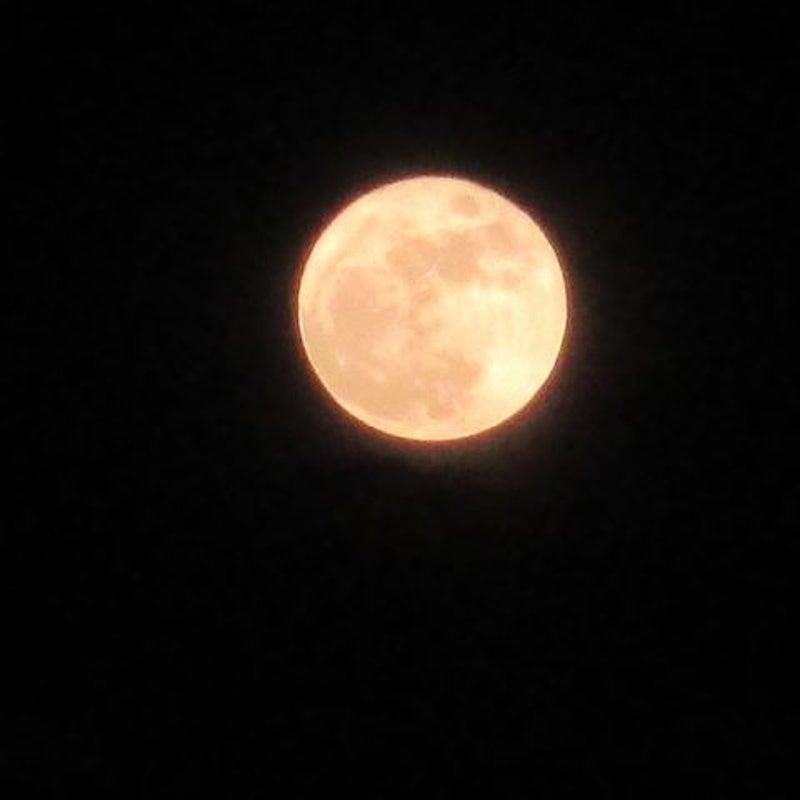 星座 月 マドモアゼル 愛