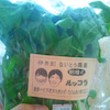 野菜から聴こえてくる、ディーバの歌声。書に似た「美の相乗」の画像