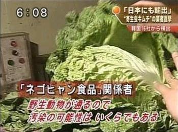 https://stat.ameba.jp/user_images/20161218/16/kujirin2014/4c/8a/j/o0350026013824012806.jpg?caw=800