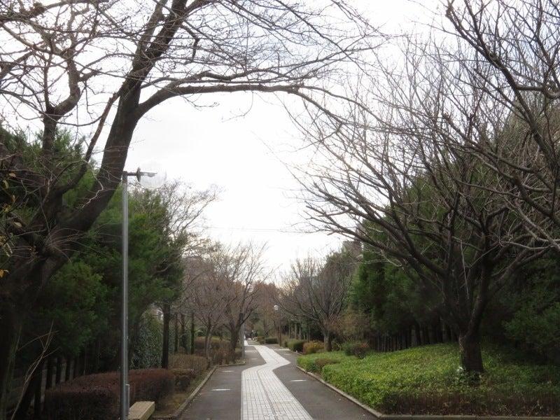 「緑園須郷台公園 四季の道」の画像検索結果